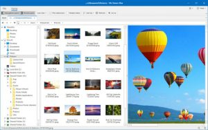 File View Plus v4.0.1.8 Crack With Product Key Download Free